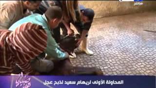 ريهام سعيد تذبح ع ج لين بنفسها عشان الحسد جريدة نورت