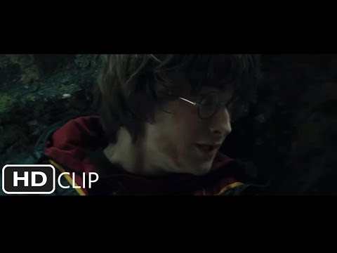 Harry Potter and the Goblet of Fire - The First Task (Part 2 of 3)