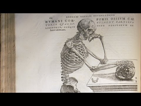 History of Science - 16th-Century Life Sciences - 10.2 Medicine and Anatomy