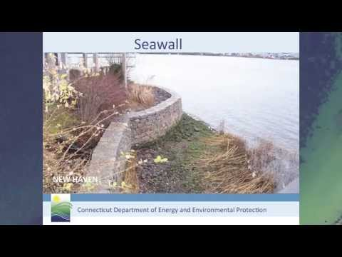 Why DEEP Limits Hard Structures: Coastal Management Act Implications for Shoreline Hardening