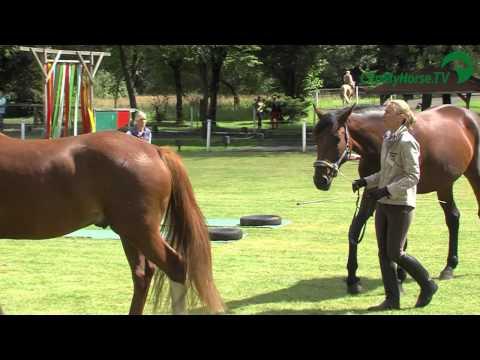 Emotion Pferd Tour  Impressionen  FS ReitZentrum Reken  2012