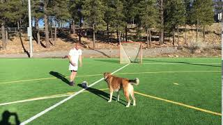 Playing Soccer With Dog