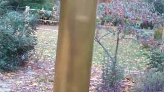 Simple Squirrel And Raccoon Barrier For Bird Feeders