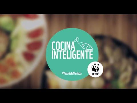 Cocina inteligente choritos al vapor en la veda de la for Cocina inteligente