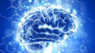 видео Что такое память человека? Какой она бывает и как развить плохую память.
