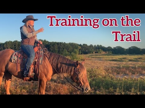 Horse Training on the Trail