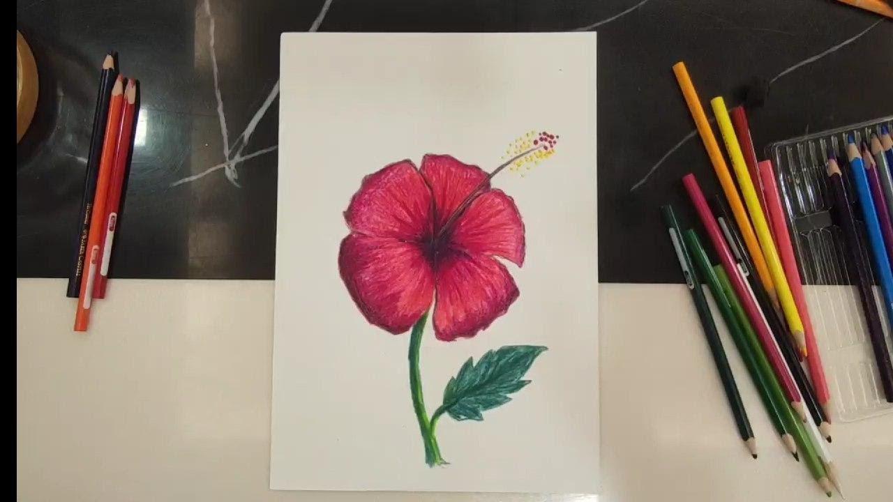 Belajar Lukis Gambar Bunga Raya Youtube