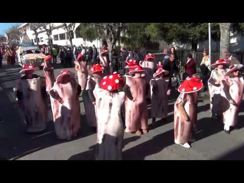 Carnaval Caldas S. Jorge 2015 Escola EB1 Cimo Vila, Pigeiros