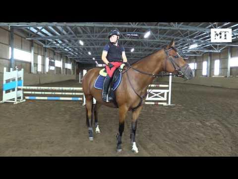 Korumies Arvi, 11, on hevosmies ja ylpeä siitä