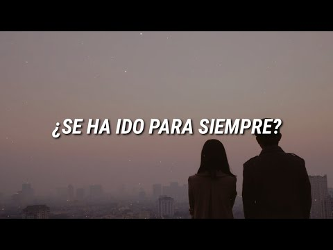 Shawn Mendes - Because I Had You  Español