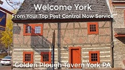 Top Bed Bug Extermination York Pa | Bed Bug Exterminator York Pa