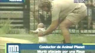 Muerte Del Cazador De Cocodrilos [Steve Irwin] thumbnail