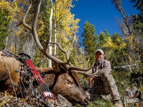 Bowhunting Elk: Monster 6x6 O.T.C Tag ~D.I.Y Colorado Elk Hunt
