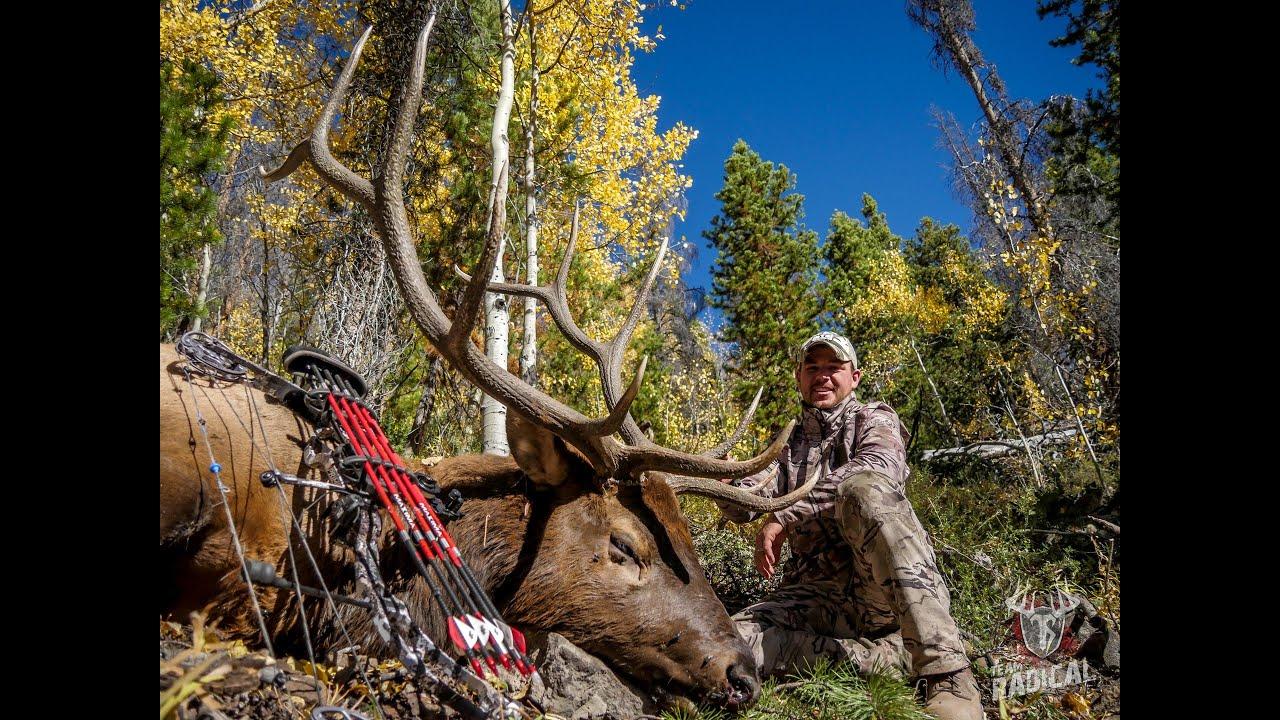 Bowhunting Elk: Monster 6x6 O T C Tag ~D I Y Colorado Elk Hunt