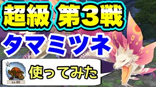 【MHR】★4怒り喰らうイビルジョーを使い、タマミツネ 超級 第3戦攻略(※やってみた系)