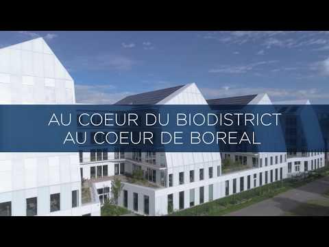 BOREAL nouveau siège de BOEHRINGER INGELHEIM à Lyon