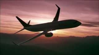 Delta Air Lines Air-to-Air 737