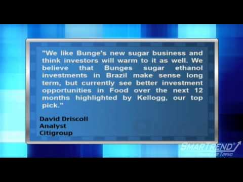 Analyst Insight: Citigroup Analyst Sees Long Term Potential for Bunge Limited