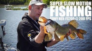 Super slow motion fishing - Sony NEX-FS700 @ 200 fps - first test - Kanalgratis.se