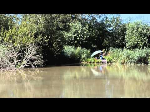 AVALON FISHERIES WESTHAY, GLASTONBURY, SOMERSET
