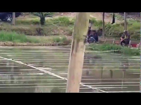 Kolam Pancing di Jaranguda (Berastagi)