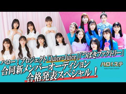 【ハロ!ステ#383】Juice=Juice&つばきファクトリー新メンバー発表スペシャル!