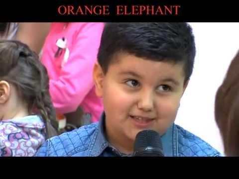 Orange Elephant Armenia Short