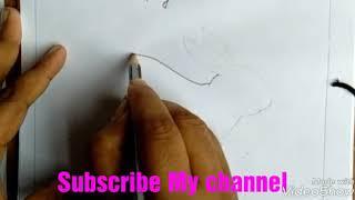 #Rabbit bird draw#draw Rabbit#how to draw a Rabbit pencil drawing