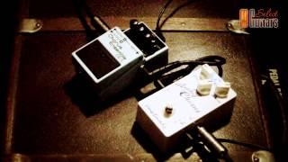 SelectGuitars - Chorus Fight
