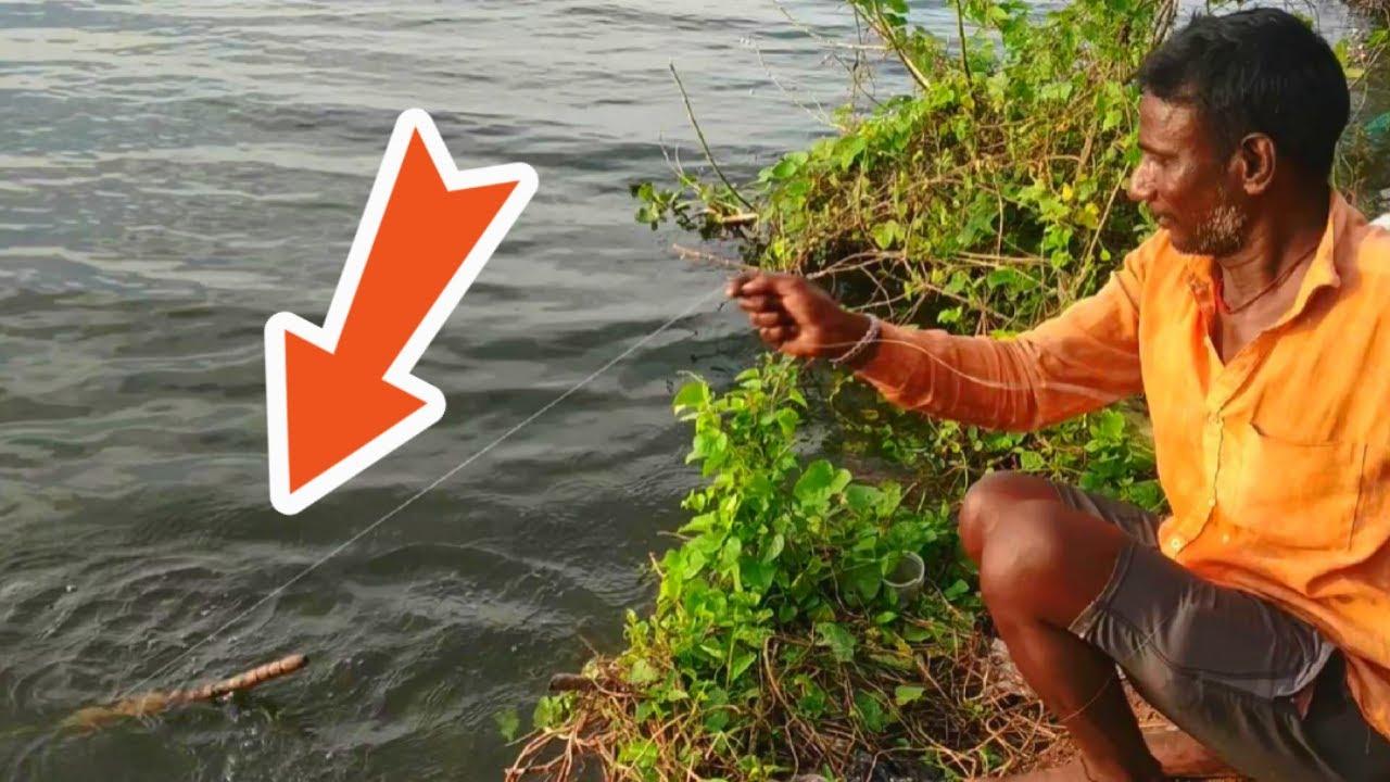 BIG SIZED 😱 Tilapia Fishing in Lake l Unique Fishing | Village Fishing in lake 🐟 | Hook Fishing 🎣