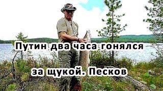 Путин два часа гонялся за щукой. Песков