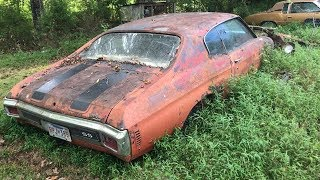 1970 CHEVELLES ABANDONED AND LEFT FOR DEAD!!! Two 1970 Chevelle Barn Finds Rotting Away In Tennessee