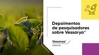 Pesquisadores apontam amplo espectro de controle de doenças da soja com Vessarya®