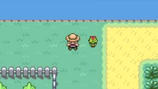 The Tragic Life of Every Bug Catcher Pokemon