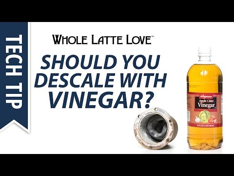 Should You Descale with Vinegar?