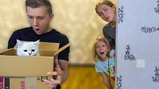 - Что За КОТЯТА в КОРОБКЕ у ПАПЫ Милана и МАМА не ЗНАЮТ об ЭТОМ Скетчи от Family Box