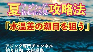 【アジング】夏アジングで良型を釣る方法 ポイント編(若狭湾バージョン) Mキャロで水の層を見切る