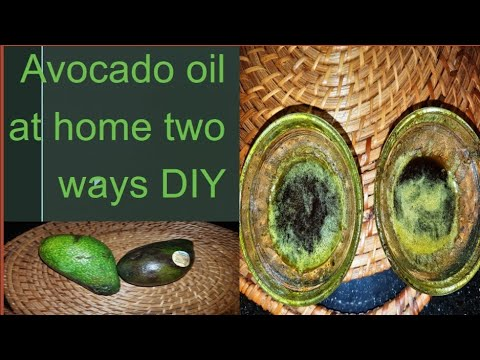 Two Ways To Make Avocado Oil At Home | For Dry Hair And Skin #diyavocadooil