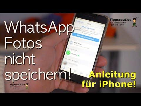 Whatsapp Bilder Nicht Speichern Youtube