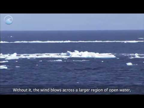 NOAA Ocean Today: The Role of Ice in the Ocean, Part 3 of 3 -- The Impacts of Shrinking Ice