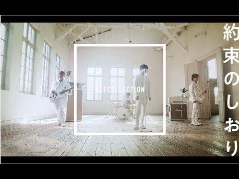 【 明日、キミのいない世界で 】主題歌 ACE COLLECTION『約束のしおり』MusicVideo