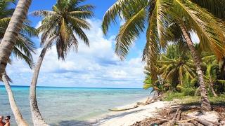 видео Экскурсии в Доминикане