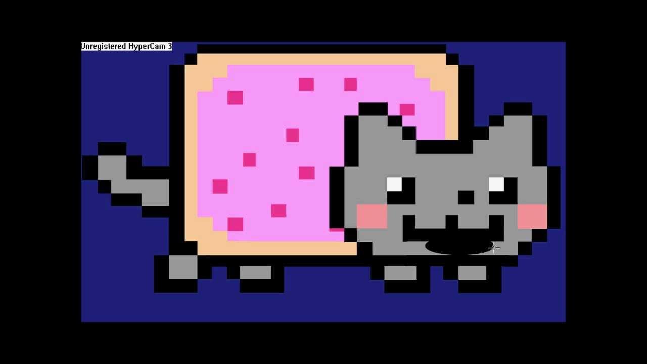 Nyan Cat Sings Numa Numa