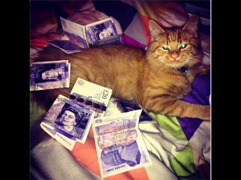 Download Cat & House - Sean Osborn