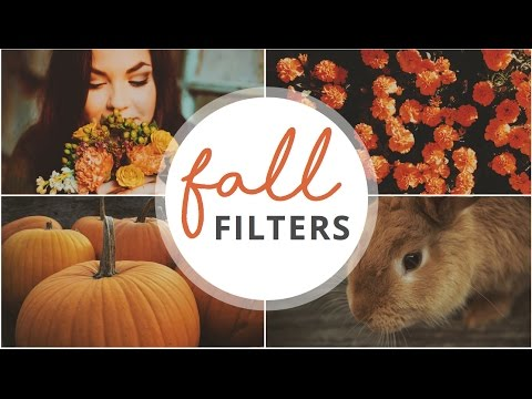 NEW FALL/AUTUM FILTERS FOR A BEAUTIFUL THEME INSTAGRAM