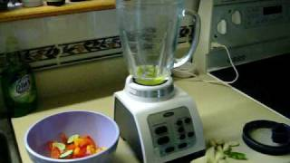 Oster Fusion Blender Salsa Recipe Making