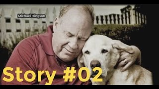 Story #02 | dog saved his blind friend from death