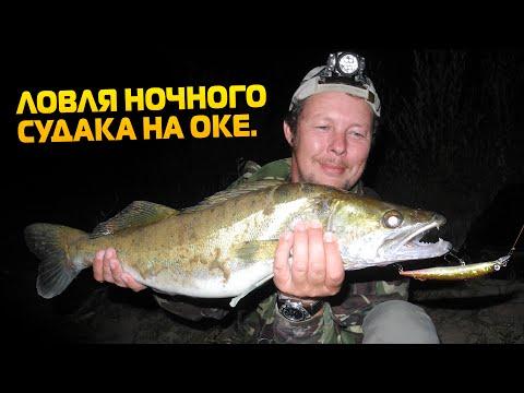 места ловли сома в нижегородской области