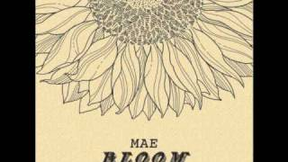 Mae - Bloom