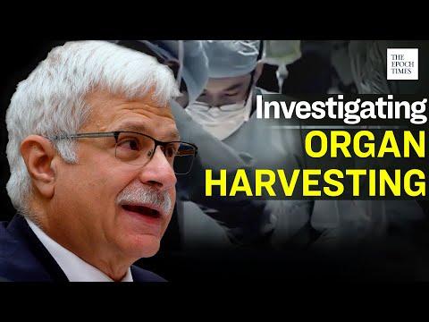 U.S. Starts Investigation into Organ Harvesting in China | Epoch News